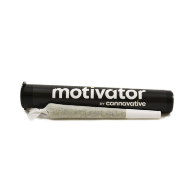 MTF (1g) Infused Pre Roll   Cannavative