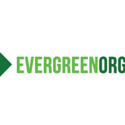Snickerdoodle Cookies 5PK | Evergreen Organix