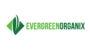 Snickerdoodle Cookies 5PK   Evergreen Organix
